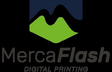 MercaFlash S.A de C.V